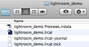 Adobe Lightroom catalog (locked)