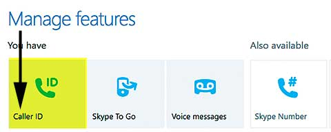 Skype Manage Features Dialog Box